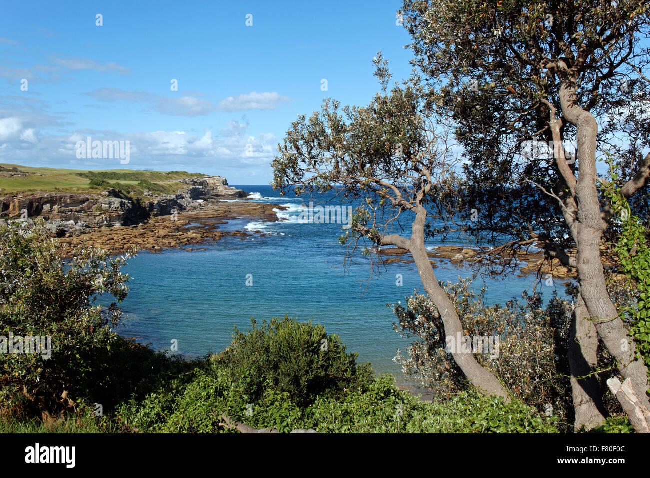 Little Bay I Sydney I Australia - Stock Image