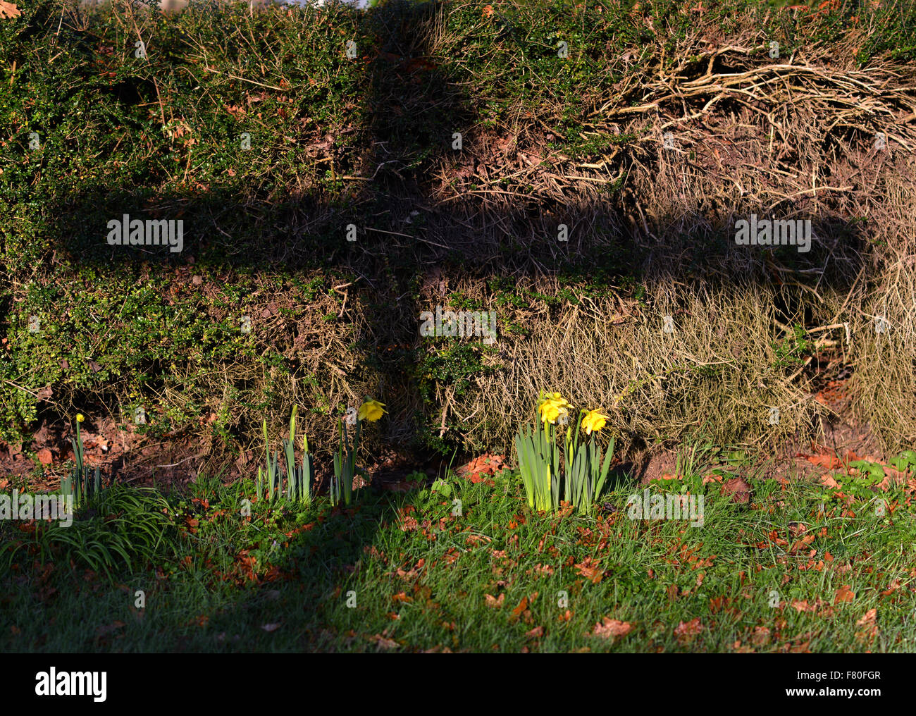 Laughton, East Sussex, UK. 4th December 2015, UK. The shadow of a traditional Sussex finger post casts a cross beside - Stock Image
