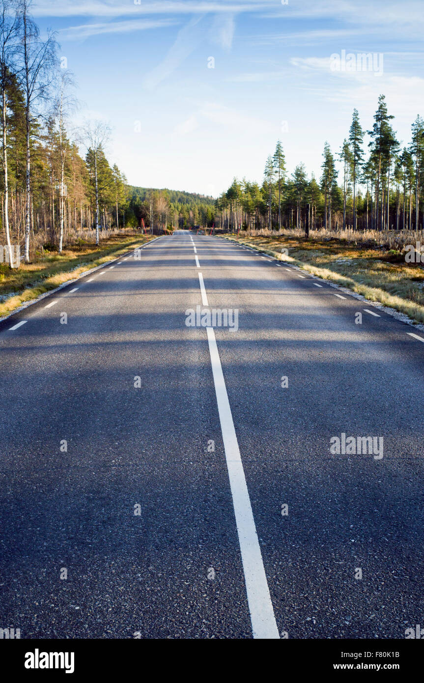 Country road, Sweden - Stock Image