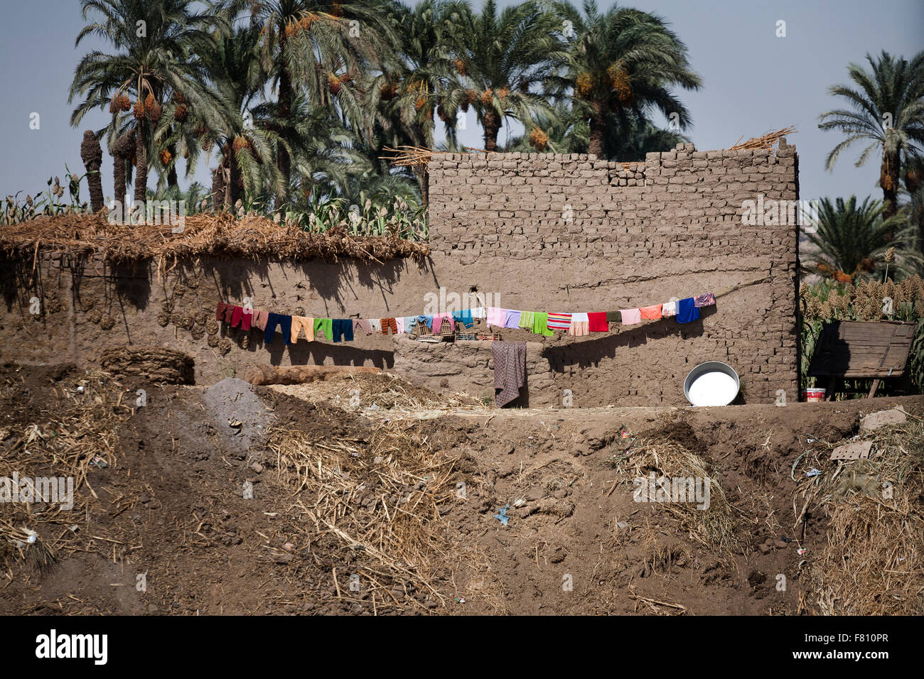 Scenes along The banks of the River Nile in Middle Egypt.Unchanged for hundreds of years. - Stock Image