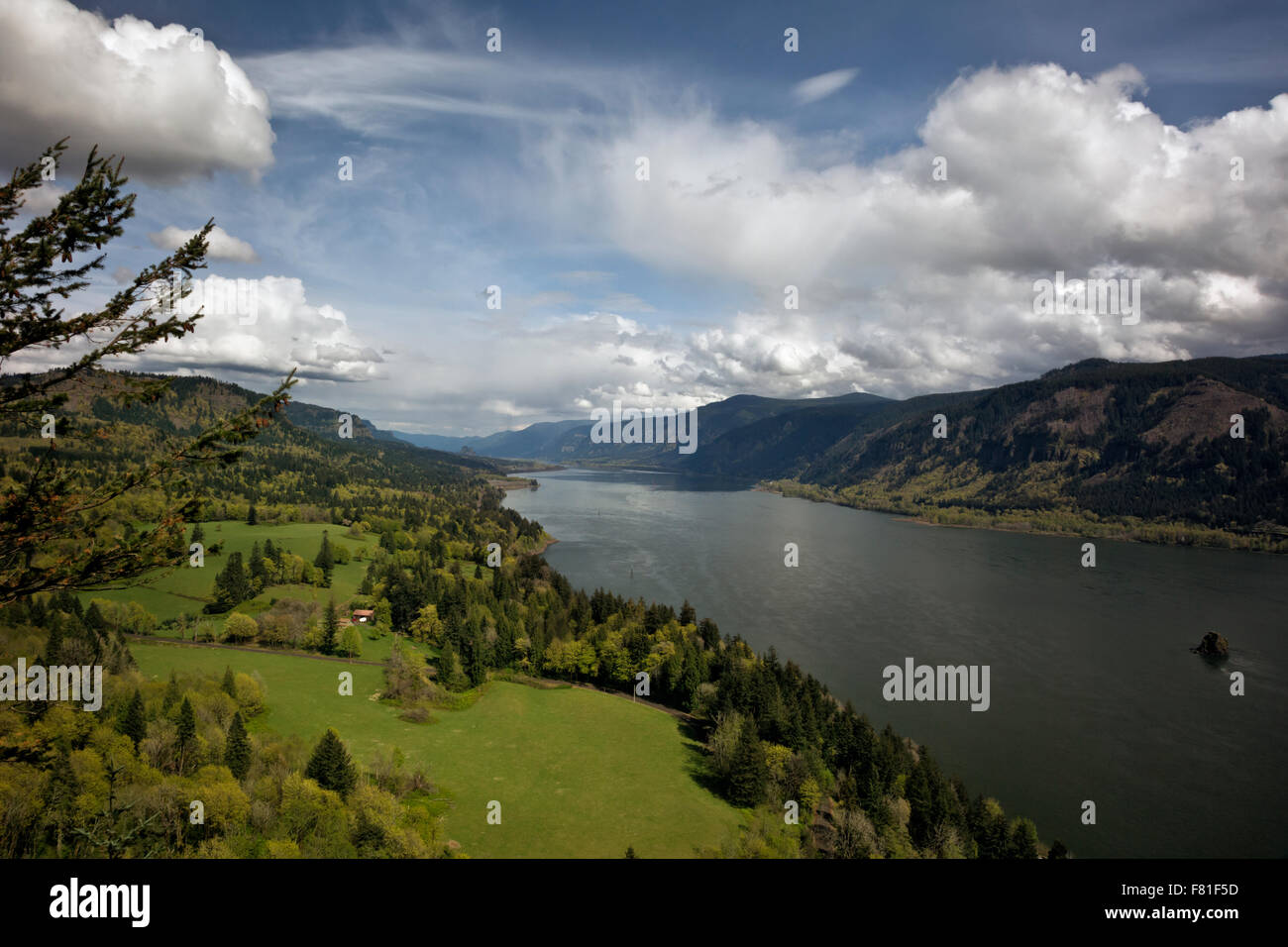 WA12249-00...WASHINGTON - View east up the Columbia River Gorge from the Cape Horn pullout on the Lewis and Clark - Stock Image