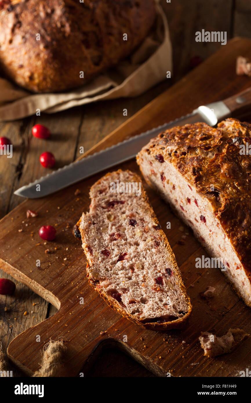 Homemade Walnut Cranberry Bread Ready to Eat - Stock Image