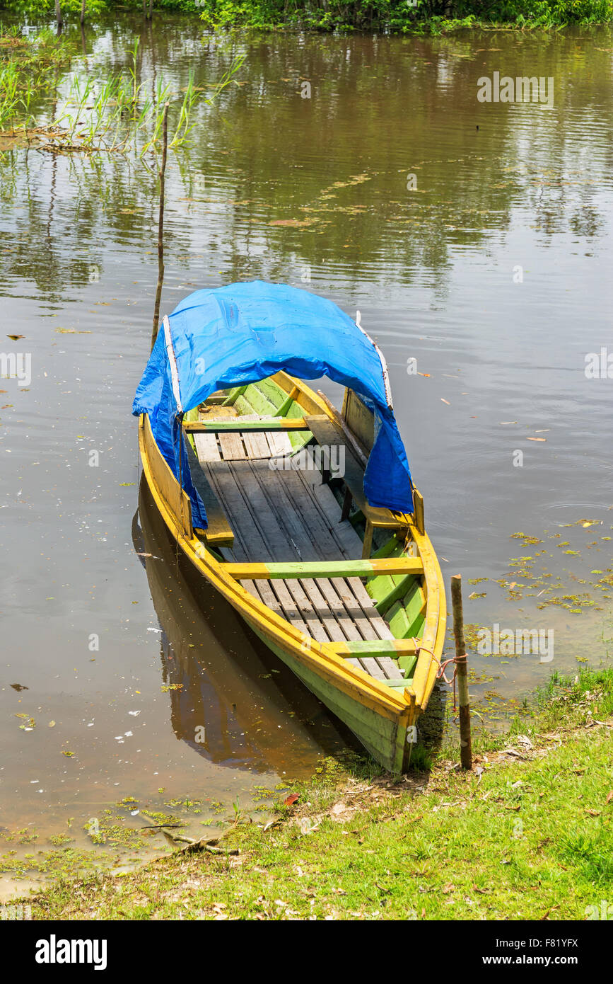 View of a green and yellow canoe on the Javari River in the Amazon rain forest in Brazil - Stock Image