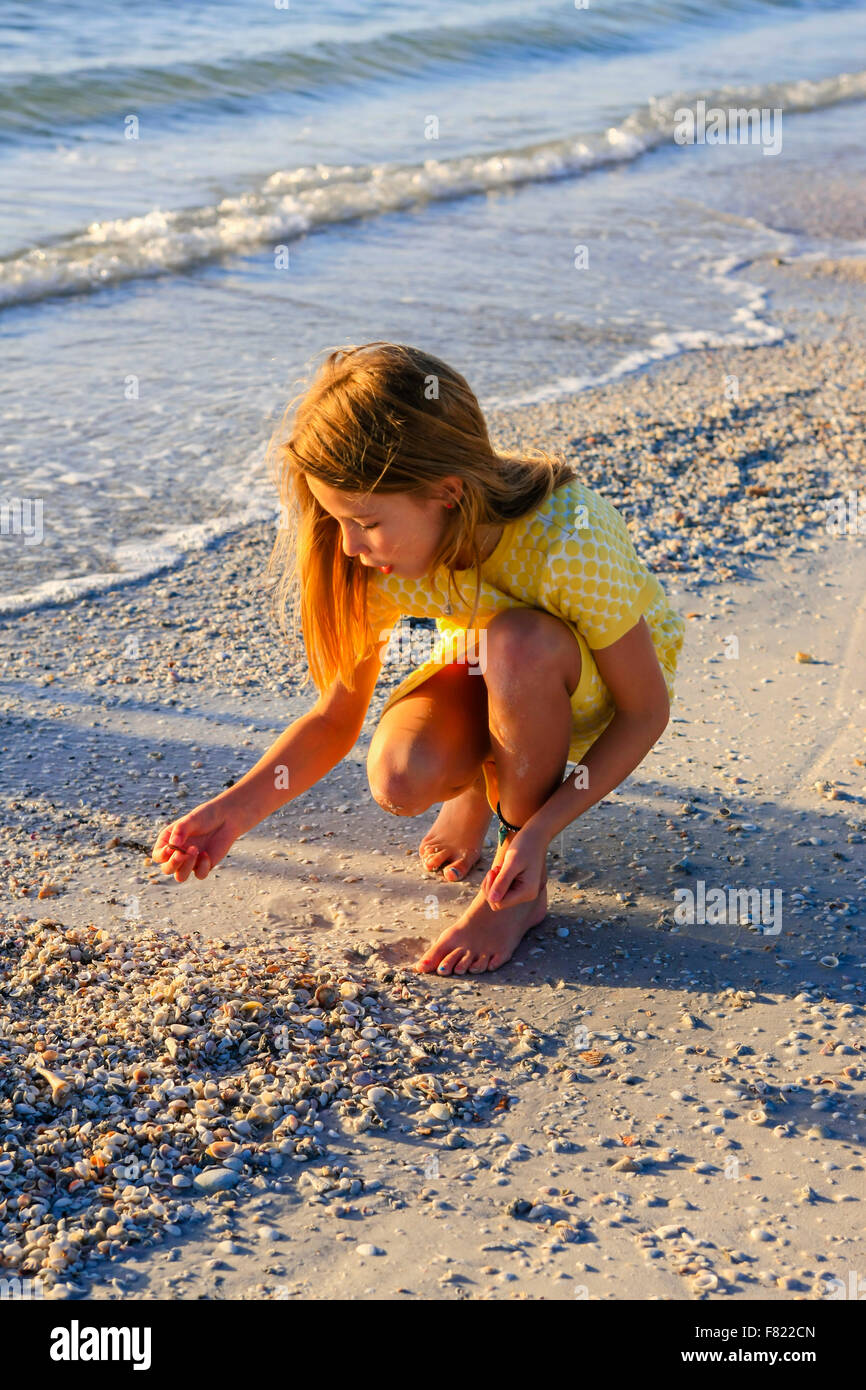 Young pre-teen girl looking for seashells at sunset on Siesta Key beach in Florida - Stock Image