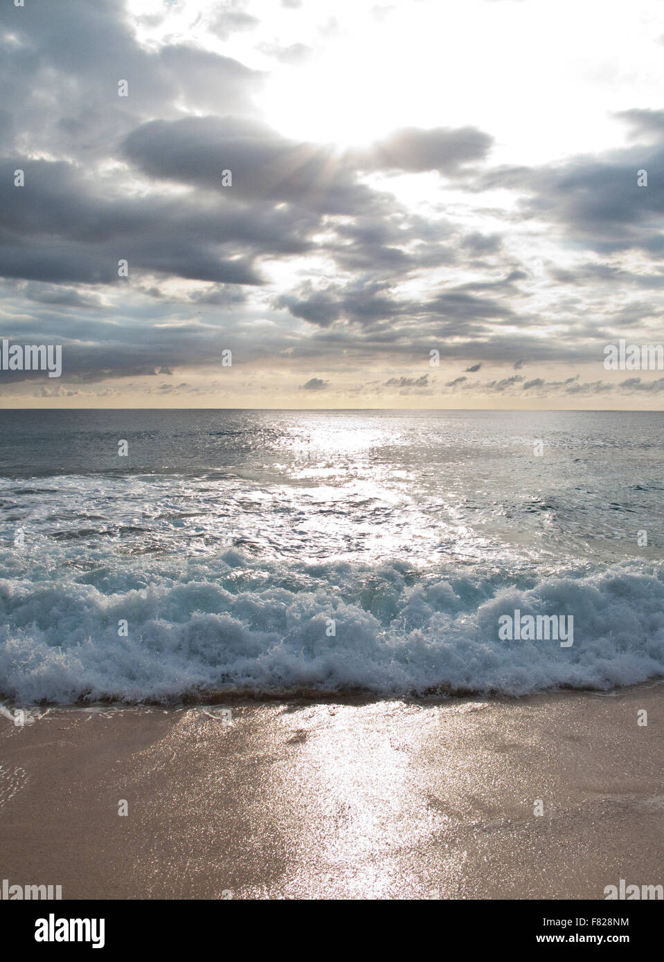 Surf at sunset - Stock Image