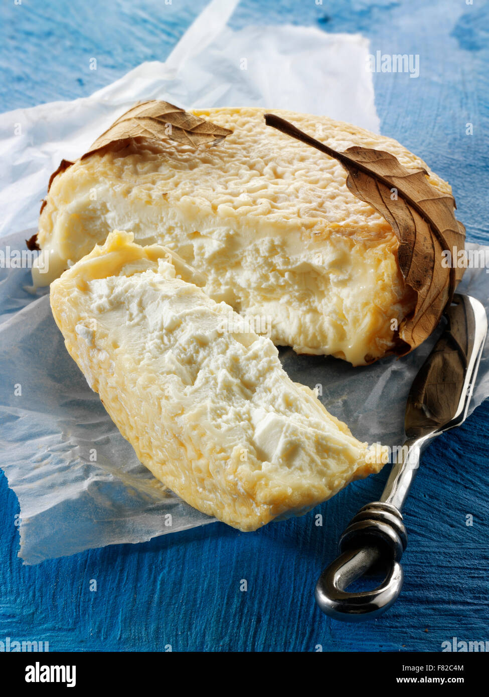 Traditional French farmstead fresh goats ( chevre) regonal Cheese from Normady - Stock Image