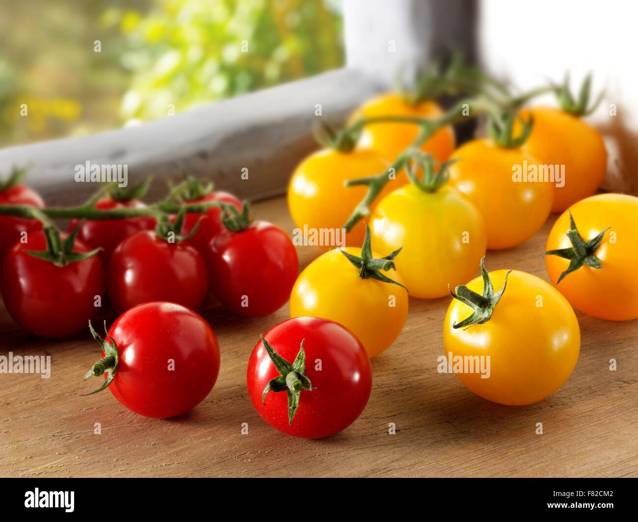 Mixed fresh picked yellow and red plum tomatoes - Stock Image