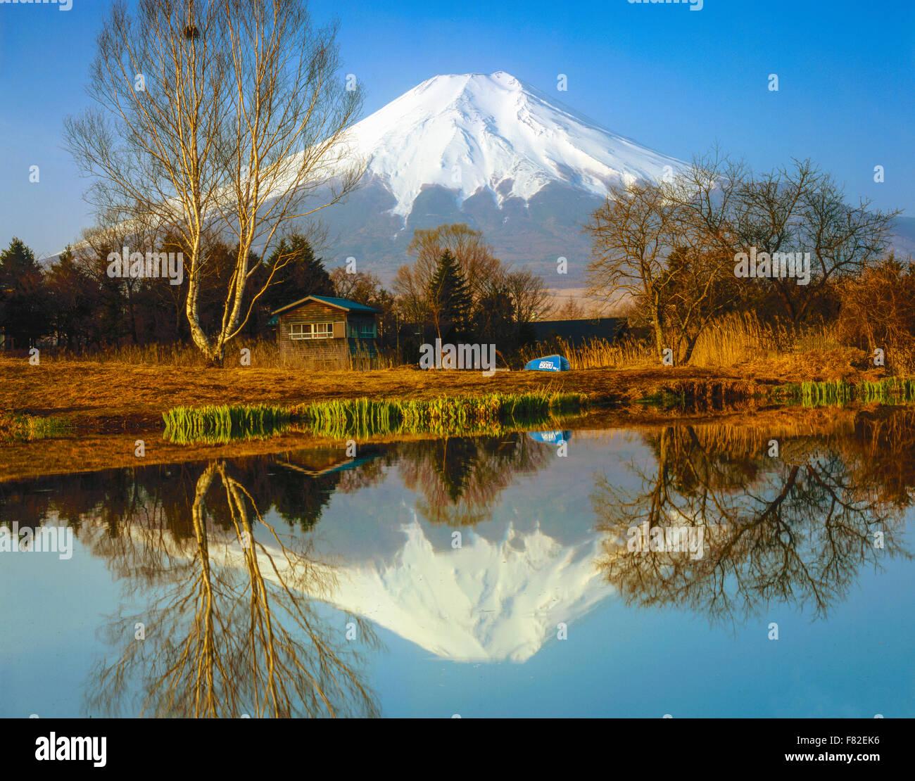Mt. Fuji reflection, Fuji-Hazone-Izu National park, Japan 12, 388 foot dormant volcano, Reflected in Tsurga Ponds/Oshino - Stock Image