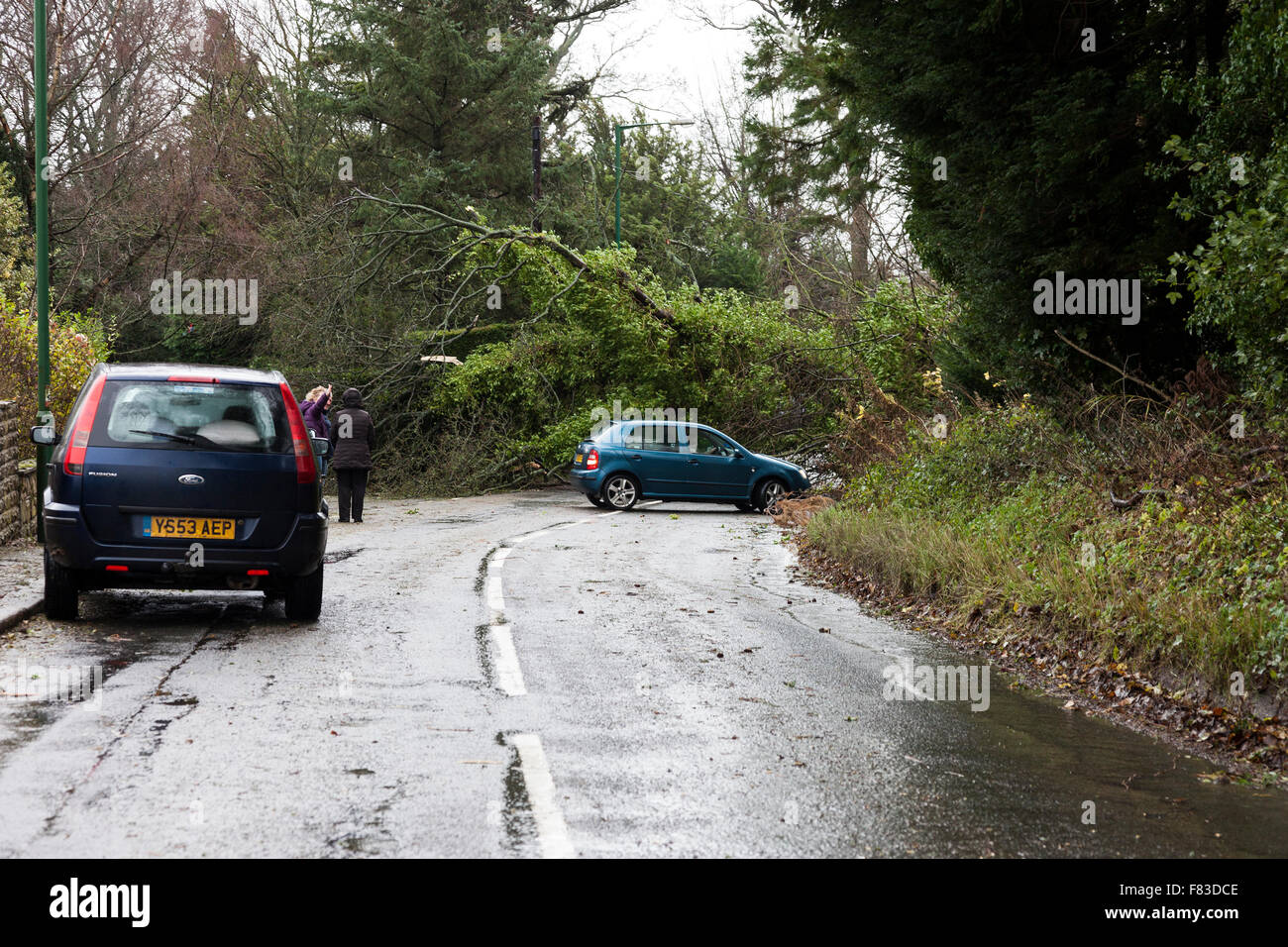 Lartington, Teesdale, County Durham, UK. 5th December 2015. UK Weather. Heavy overnight rain and storm force winds - Stock Image