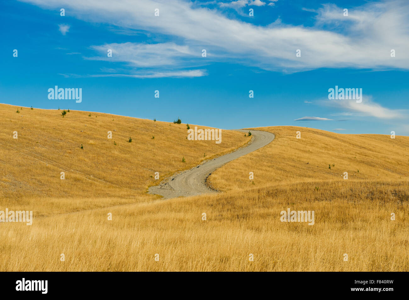 Winding road in Mackenzie country, South Island, New Zealand - Stock Image