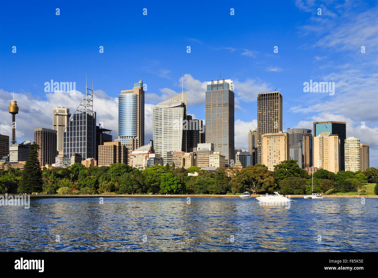 Royal national park in SYdney with City high rise business towers rising above green trees and harbour cove on a - Stock Image
