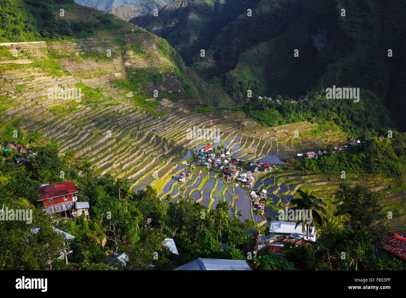 UNESCO rice terraces Batad/Banaue Phlippines - Stock Image