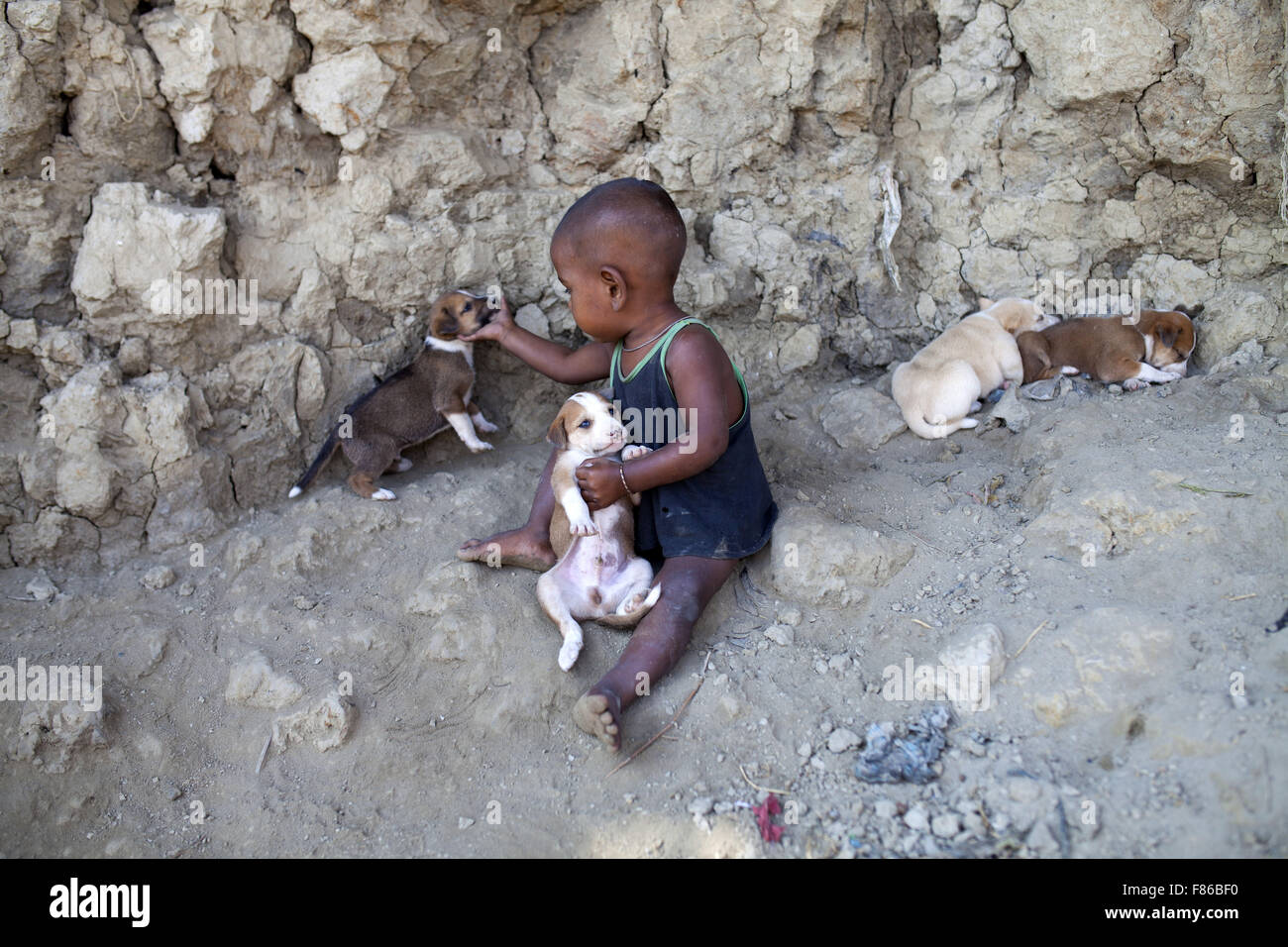 Nov. 29, 2015 - Cox'S Bazar, Bangladesh - COX's BAZAR, BANGLADESH - November 29: Achild playing with dog's - Stock Image
