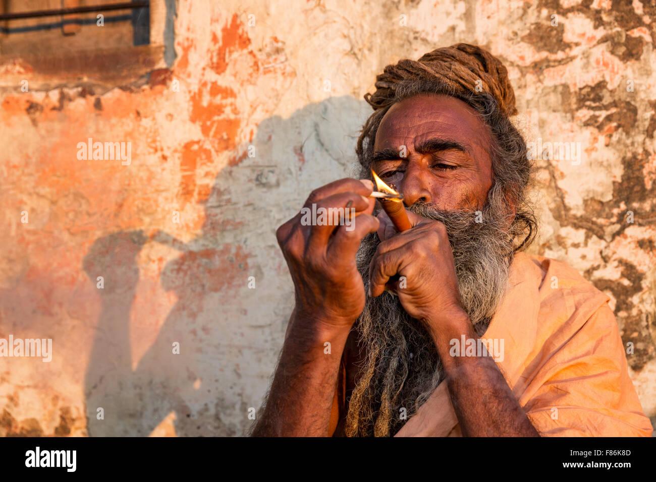 A Sadhu smoking ganja, holy man, Galtaji, Khania-Balaji, Jaipur, Rajasthan, India - Stock Image