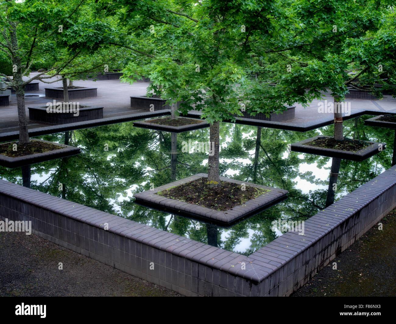 Maple trees in reflecting pool. The Oregon Garden. Silverton, Oregon - Stock Image