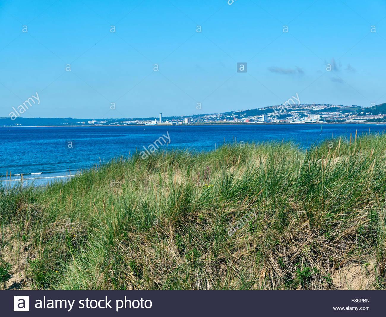 Sand dunes of Maram grasses on Aberavon beach over looking Swansea bay - Stock Image
