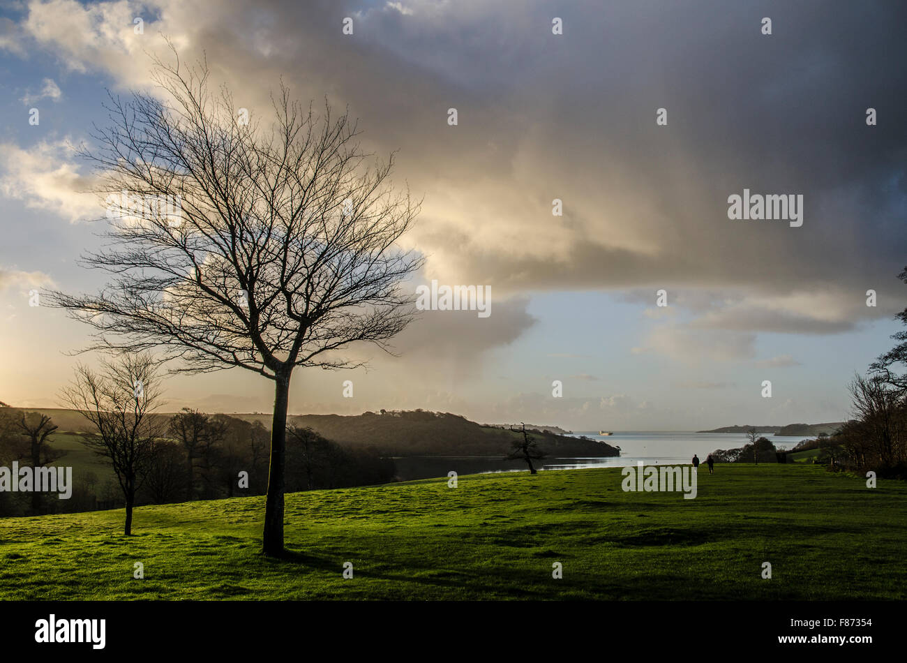 Looking towards the Carrick roads on the river fal in Cornwall, England, UK - Stock Image