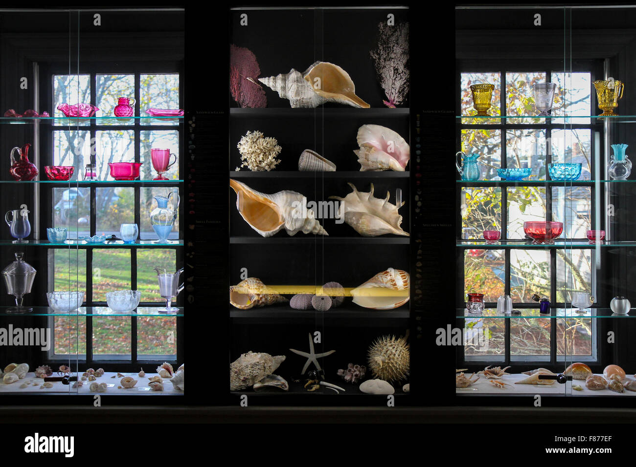 Seashells and Sandwich glass in the Durand Room, Atwood House Museum, Chatham, Massachusetts - Stock Image