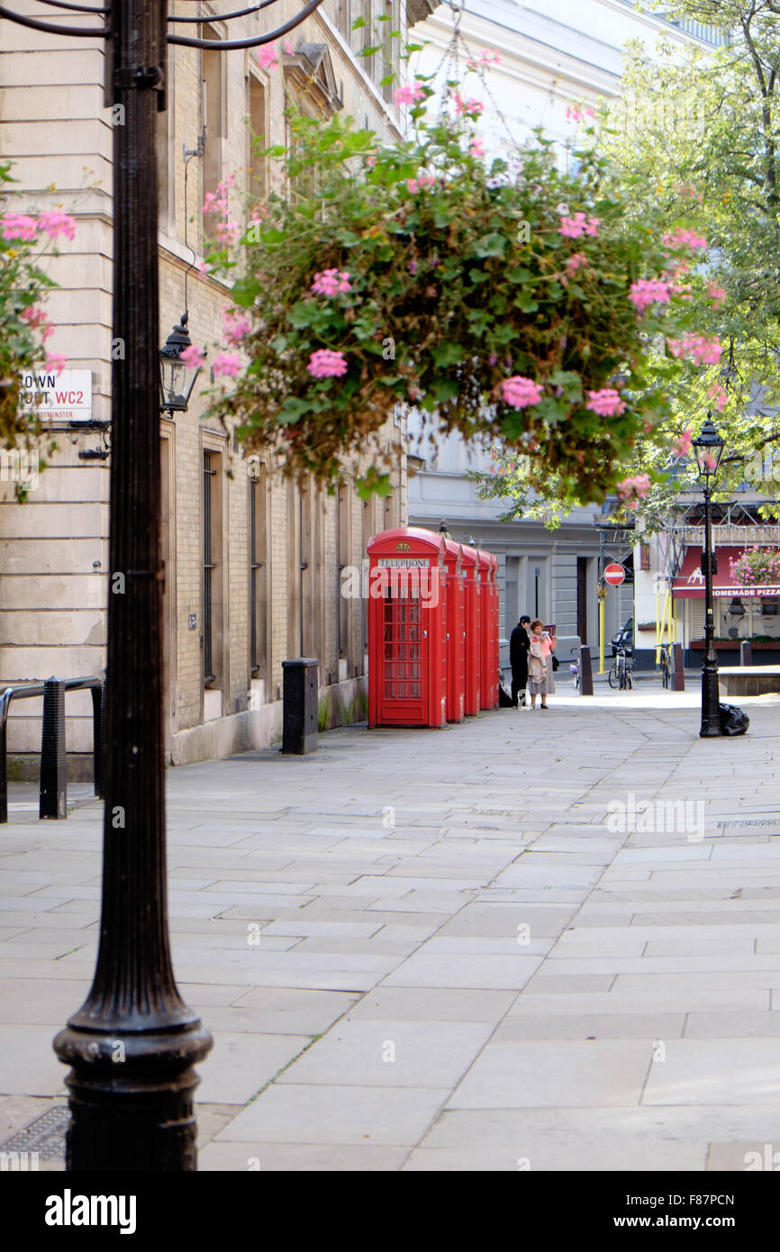 Colorful fall flowers hang from streetlights on a typical British street in London, England. - Stock Image