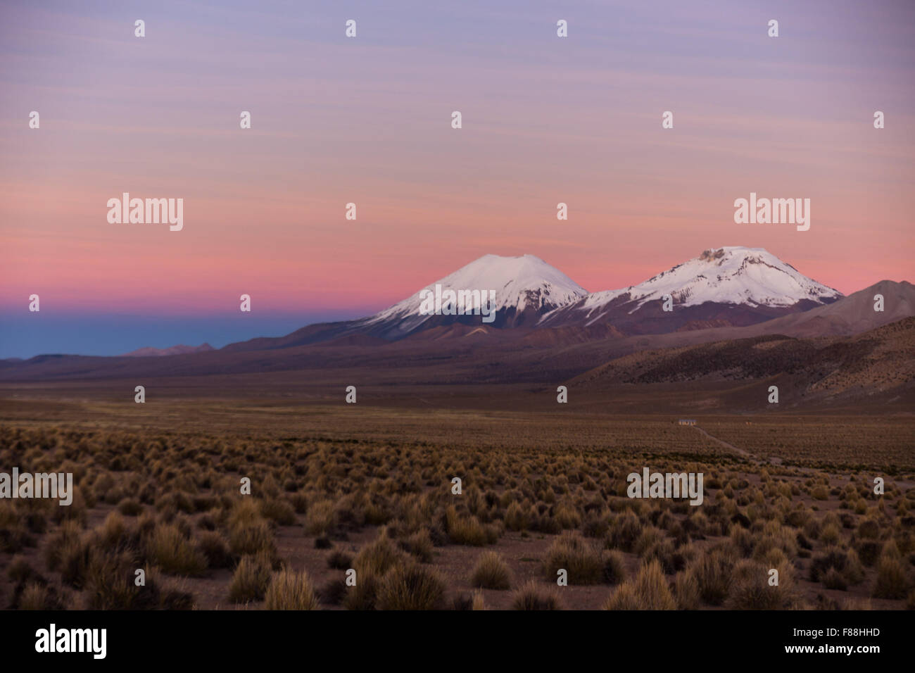 Sunset in Andes. Parinacota and Pomerade volcanos. High Andean landscape in the Andes. High Andean tundra landscape - Stock Image