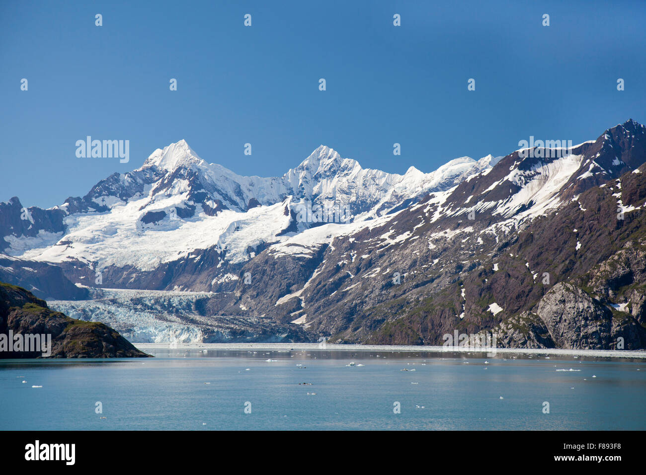 margerie glacier in alaskas glacier national park - Stock Image