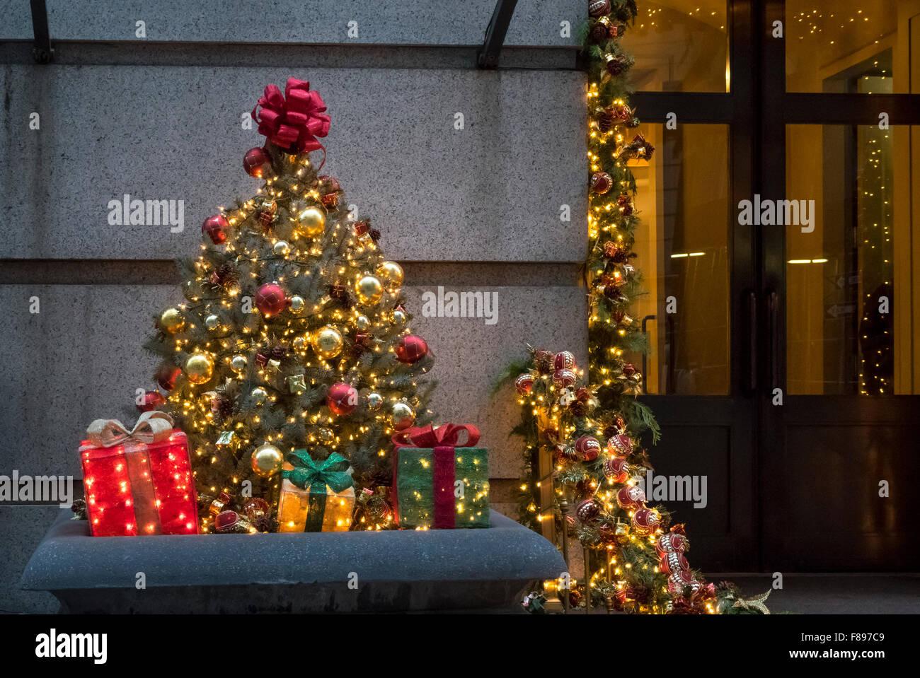 Fresh Christmas Trees Sydney