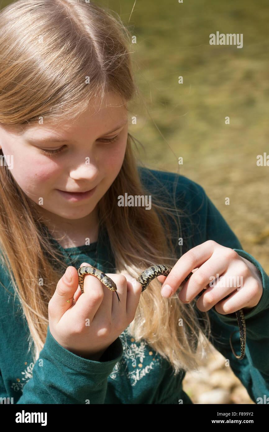 Sicilian Grass Snake, girl, child, Sizillianische Ringelnatter, Süditalienische Ringelnatter, Mädchen, - Stock Image