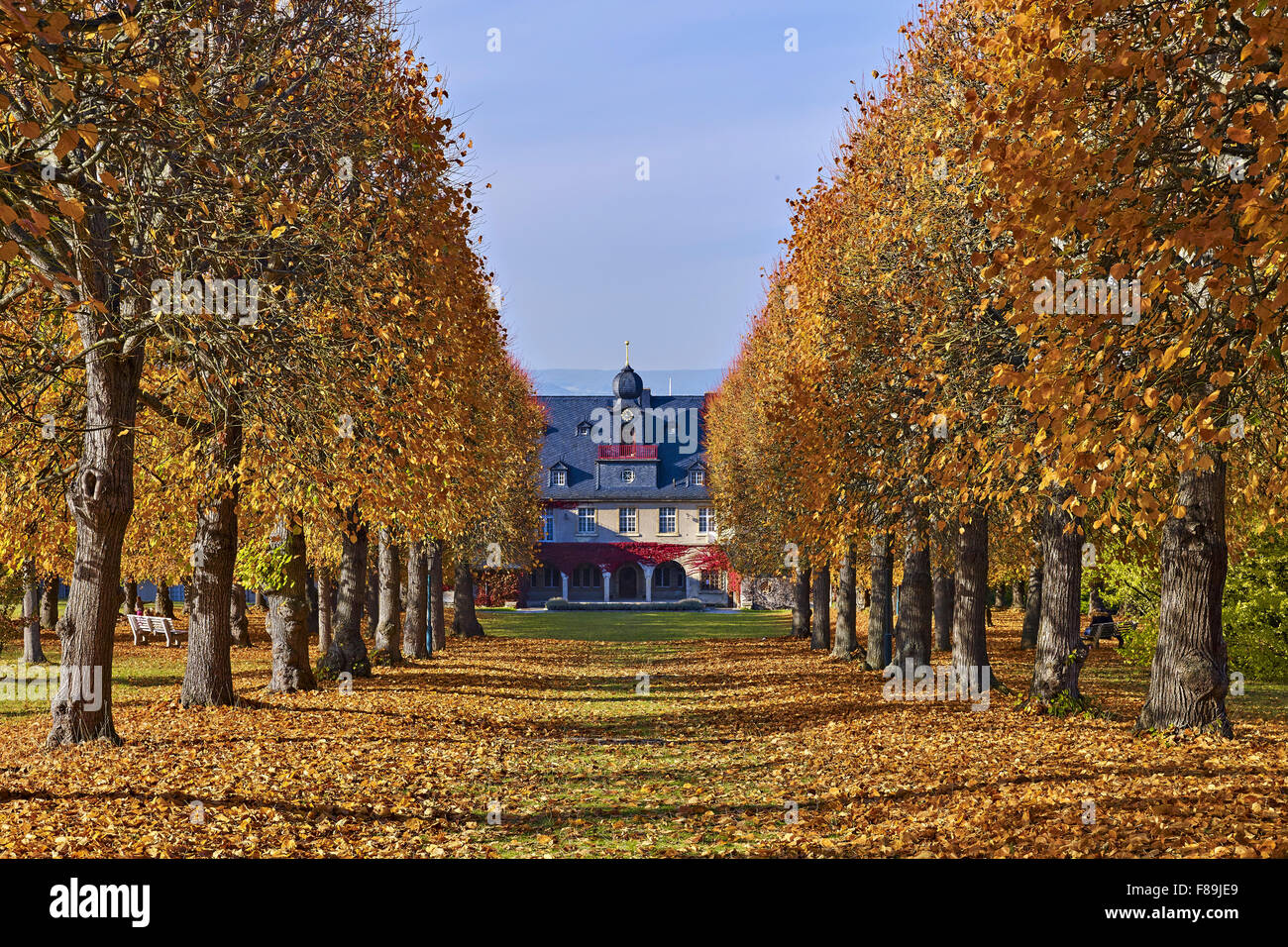 Park of Villa Bergfried, Saalfeld, Thuringia, Germany Stock Photo