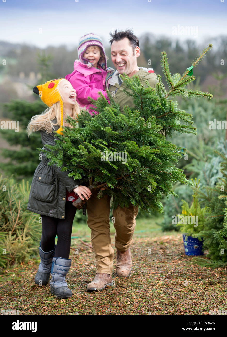 A family buying their Christmas tree from Dowdeswell Forestry, Gloucestershire UK - Stock Image