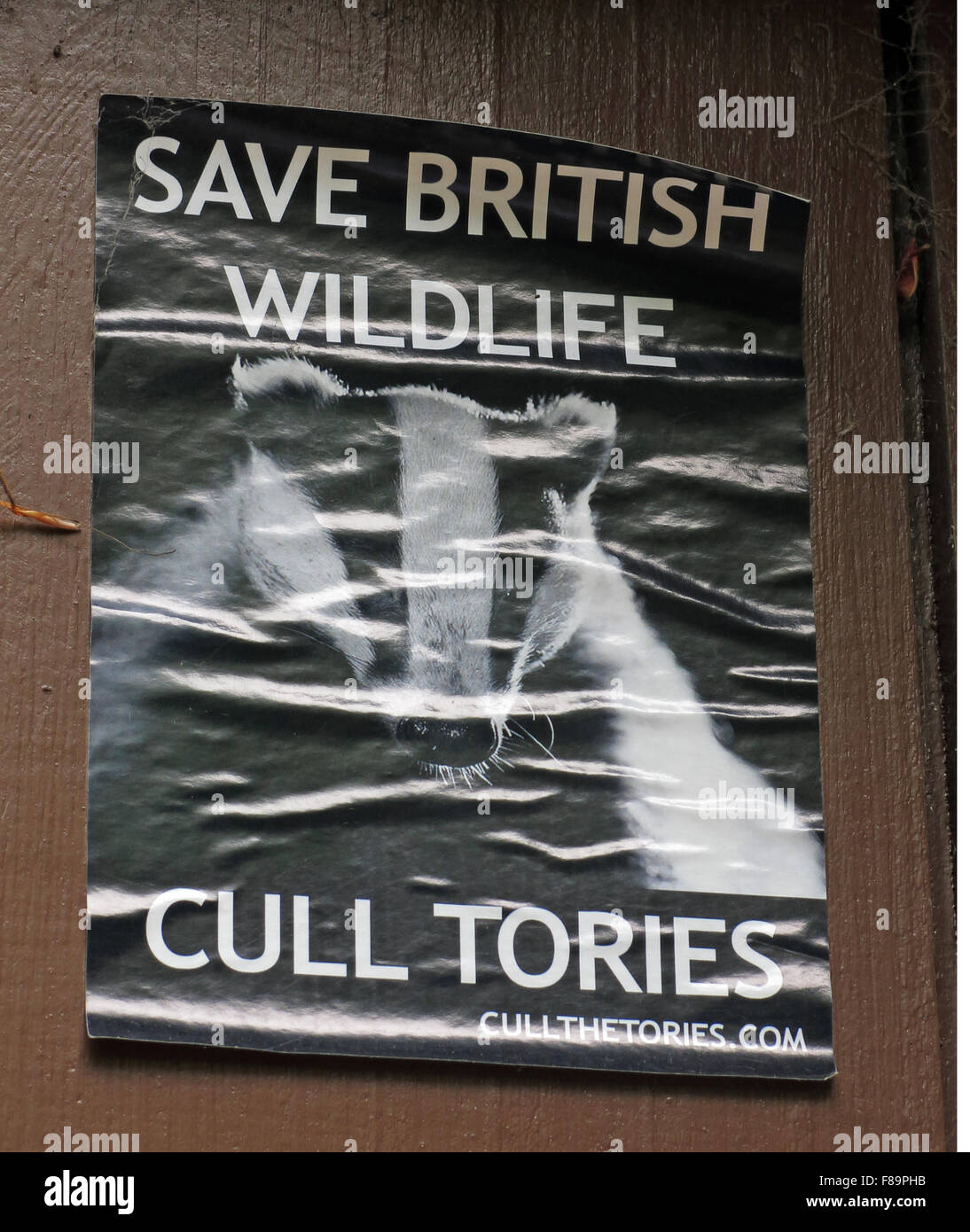 Save British Wildlife Poster,Walsall,West Midlands,Cull Tories, England, UK - Stock Image