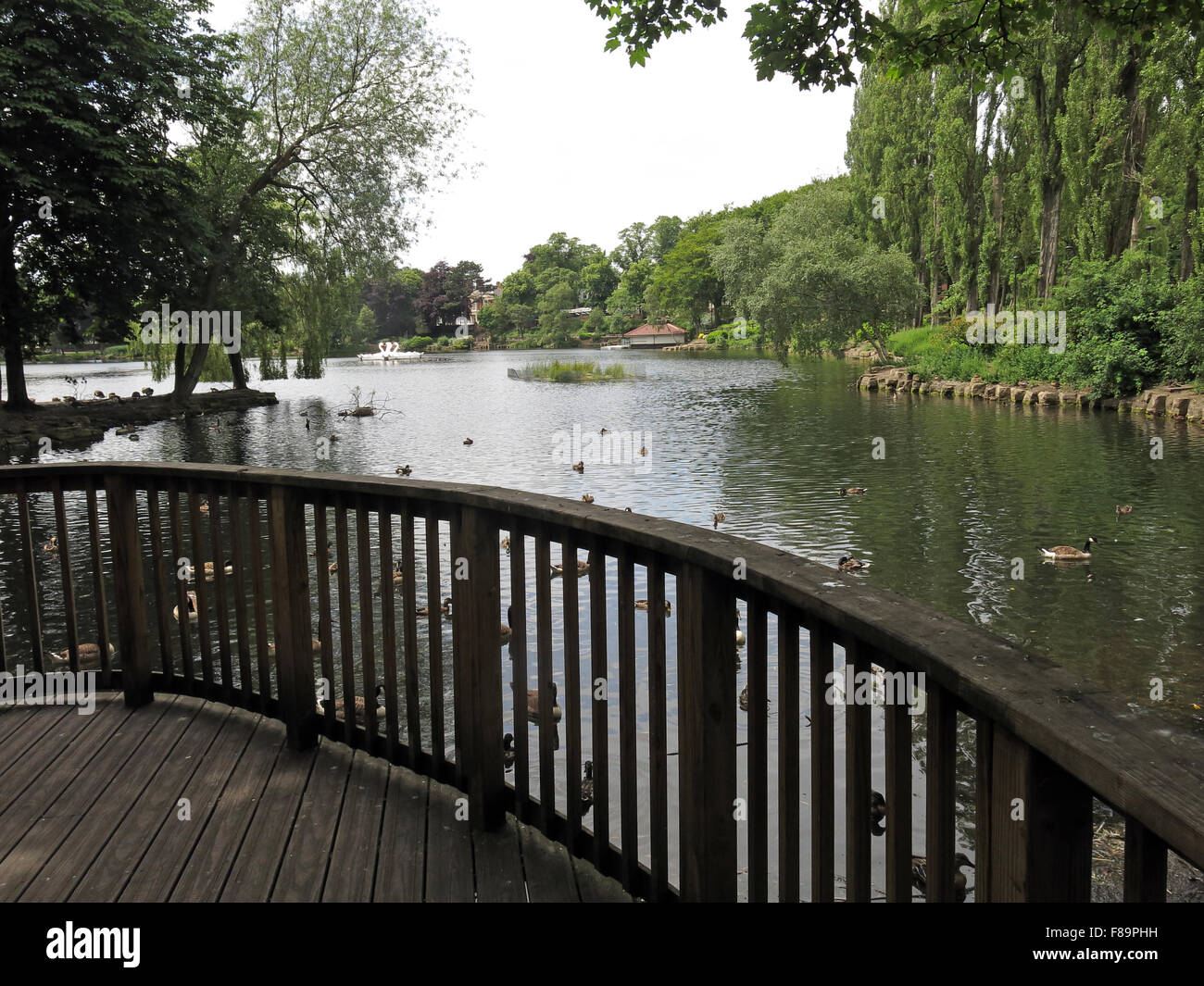 Walsall Arboretum lake in summer, West Midlands, England,UK - Stock Image