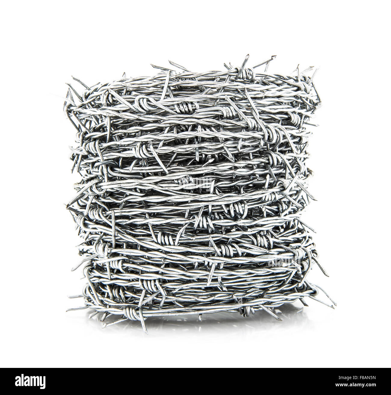 Coil of Barbed wire isolated on white background - Stock Image
