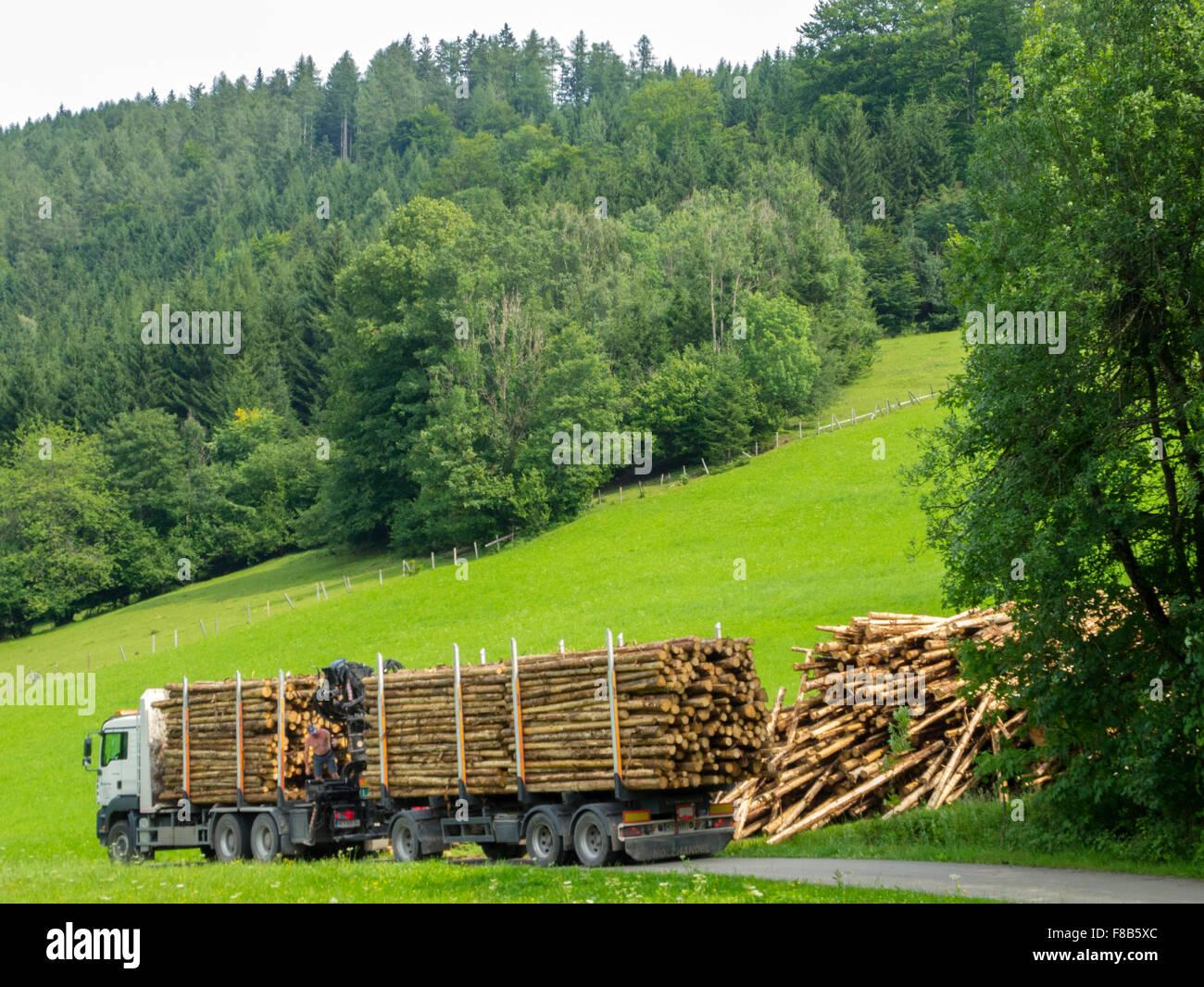 Österreich, Niederösterreich, Hochschlag bei Reinsberg, Holztransporter - Stock Image