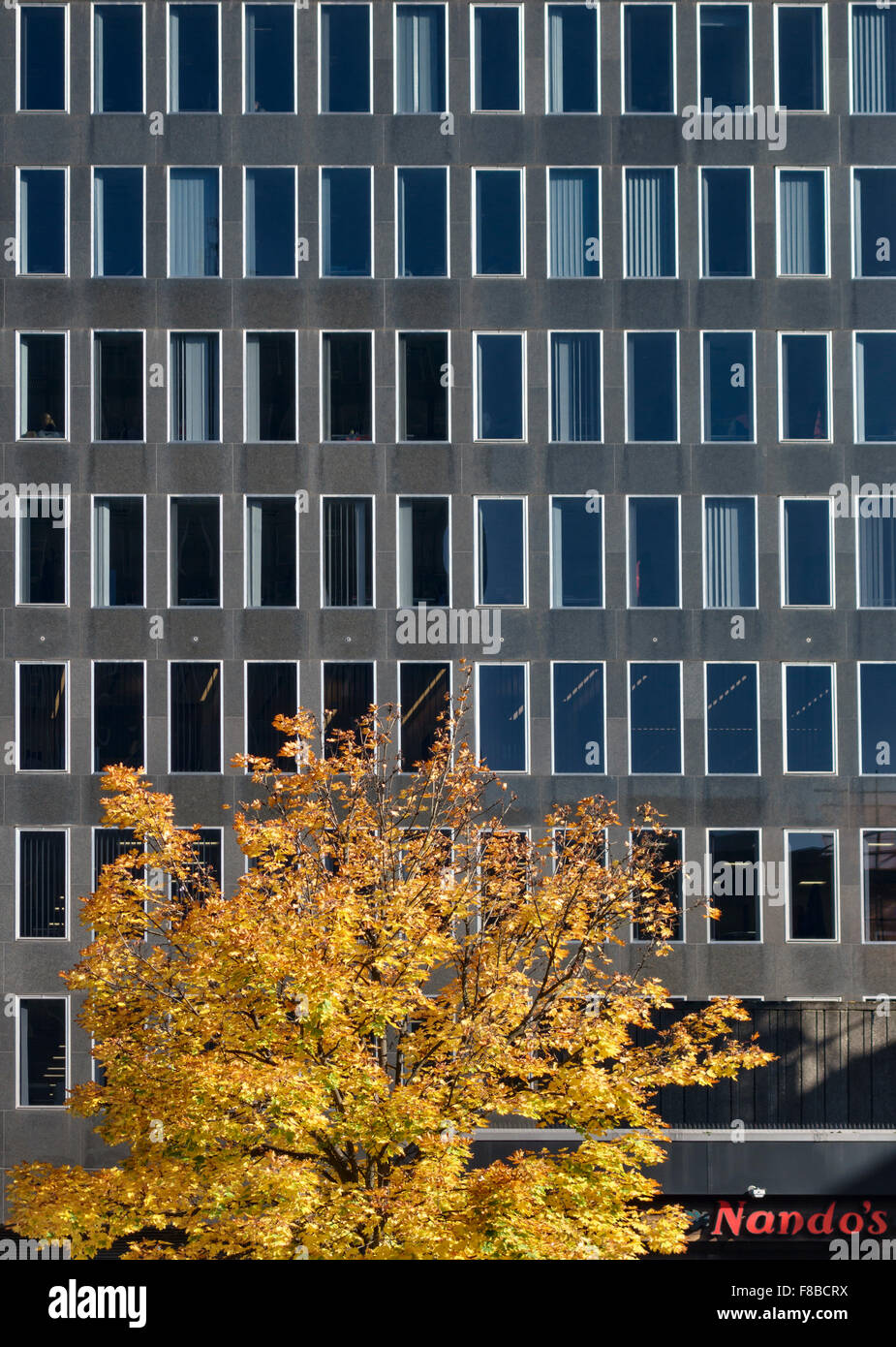Euston Square, London, UK. The Podium (1 Eversholt Street), a block of serviced offices in central London run by - Stock Image