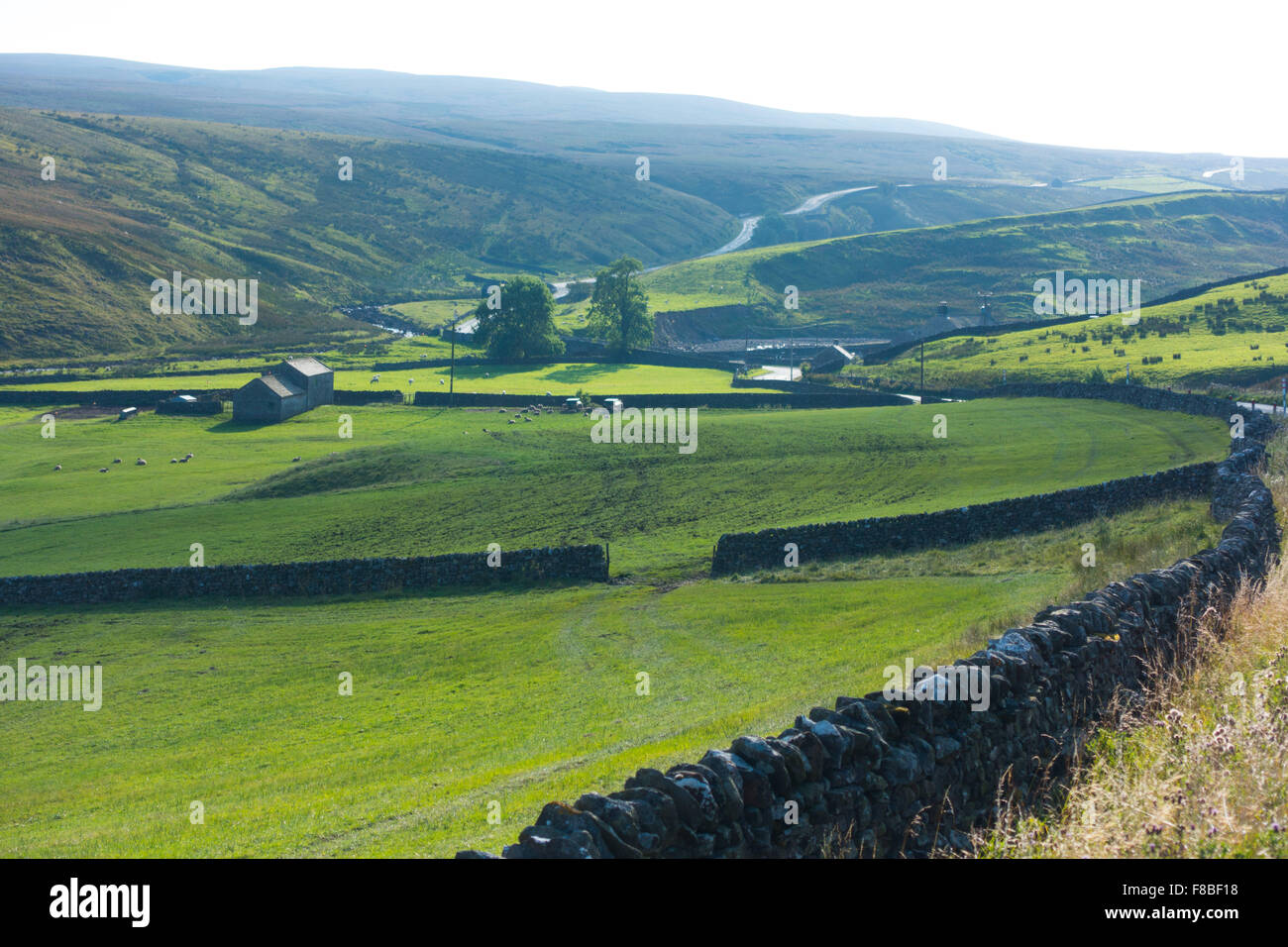 Lune Moor or Lune Forest in the Teesdale district of West Durham - Stock Image