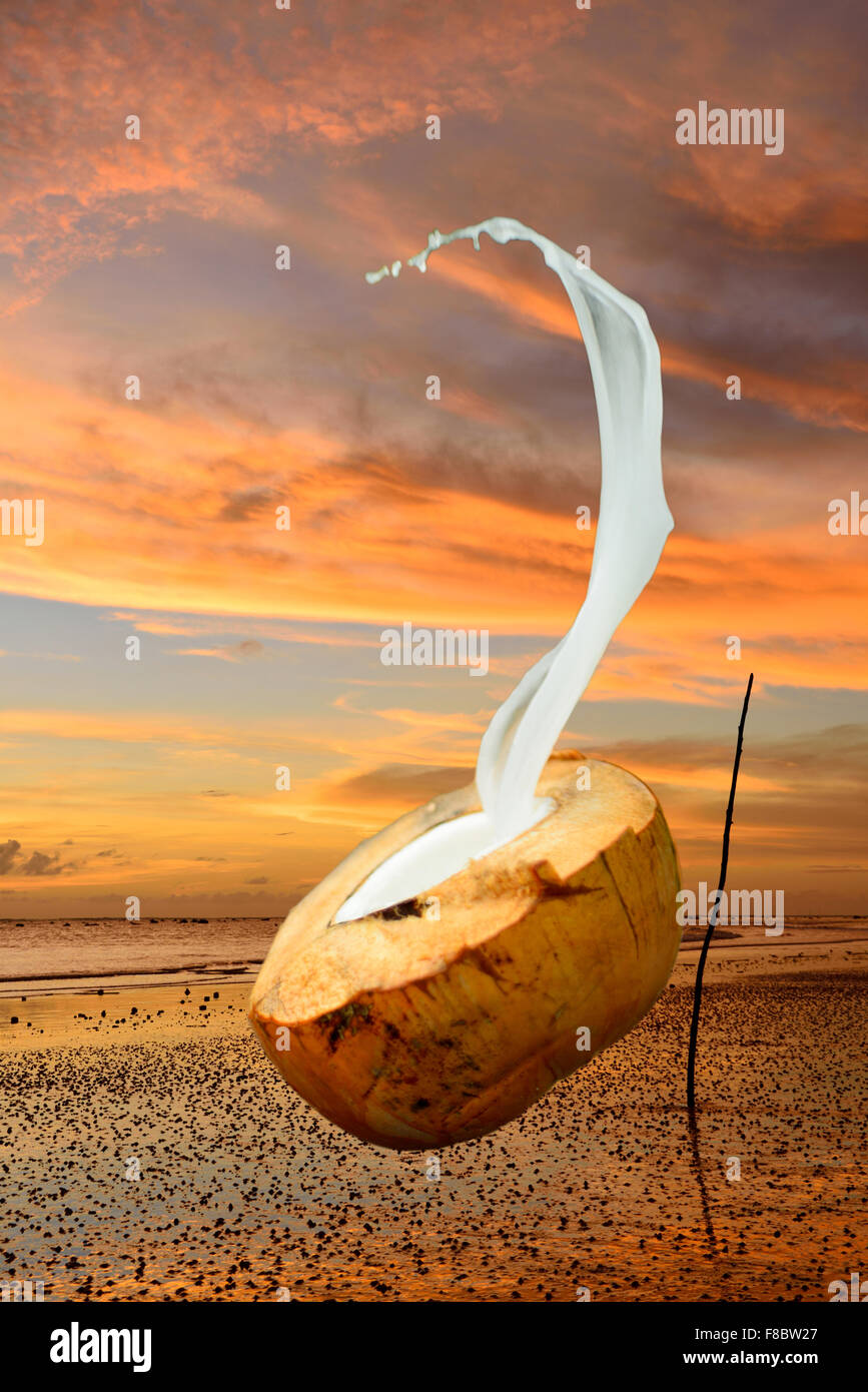 Coconut water spurt with a pink sky background - Stock Image