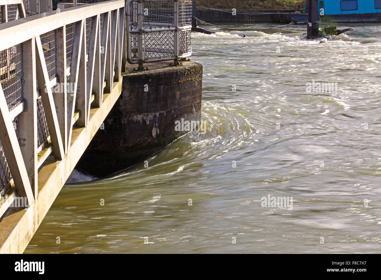 Fast rushing water coursing around the pillar of a weir showing just how fast it is flowing in the swollen river. - Stock Image