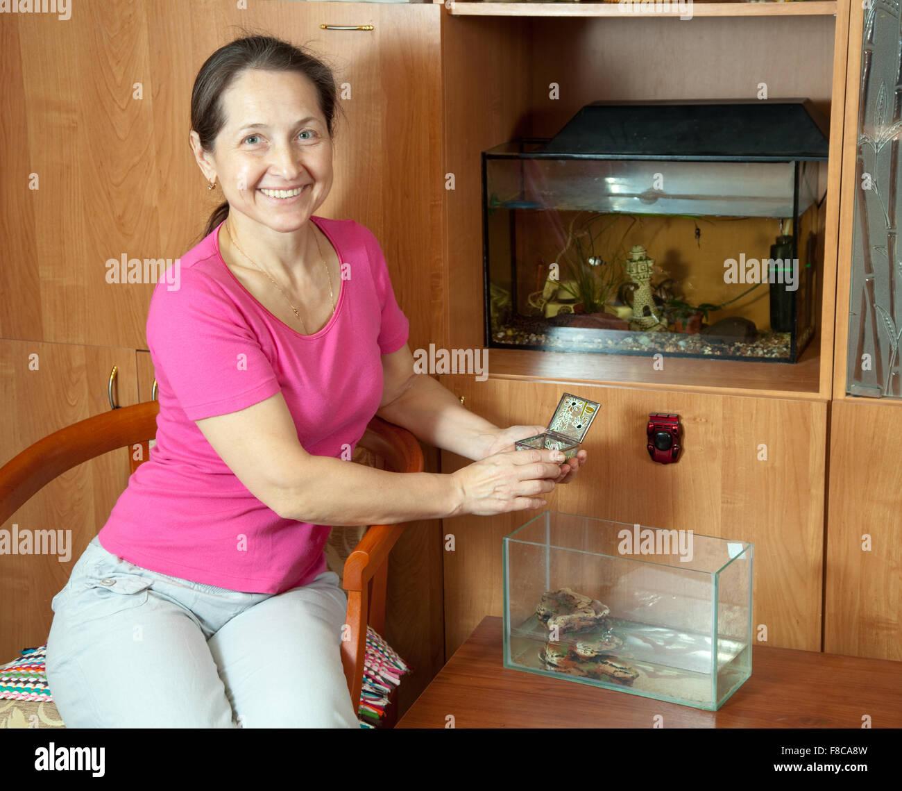 woman feeding little Pond slider  in aquarium at home - Stock Image