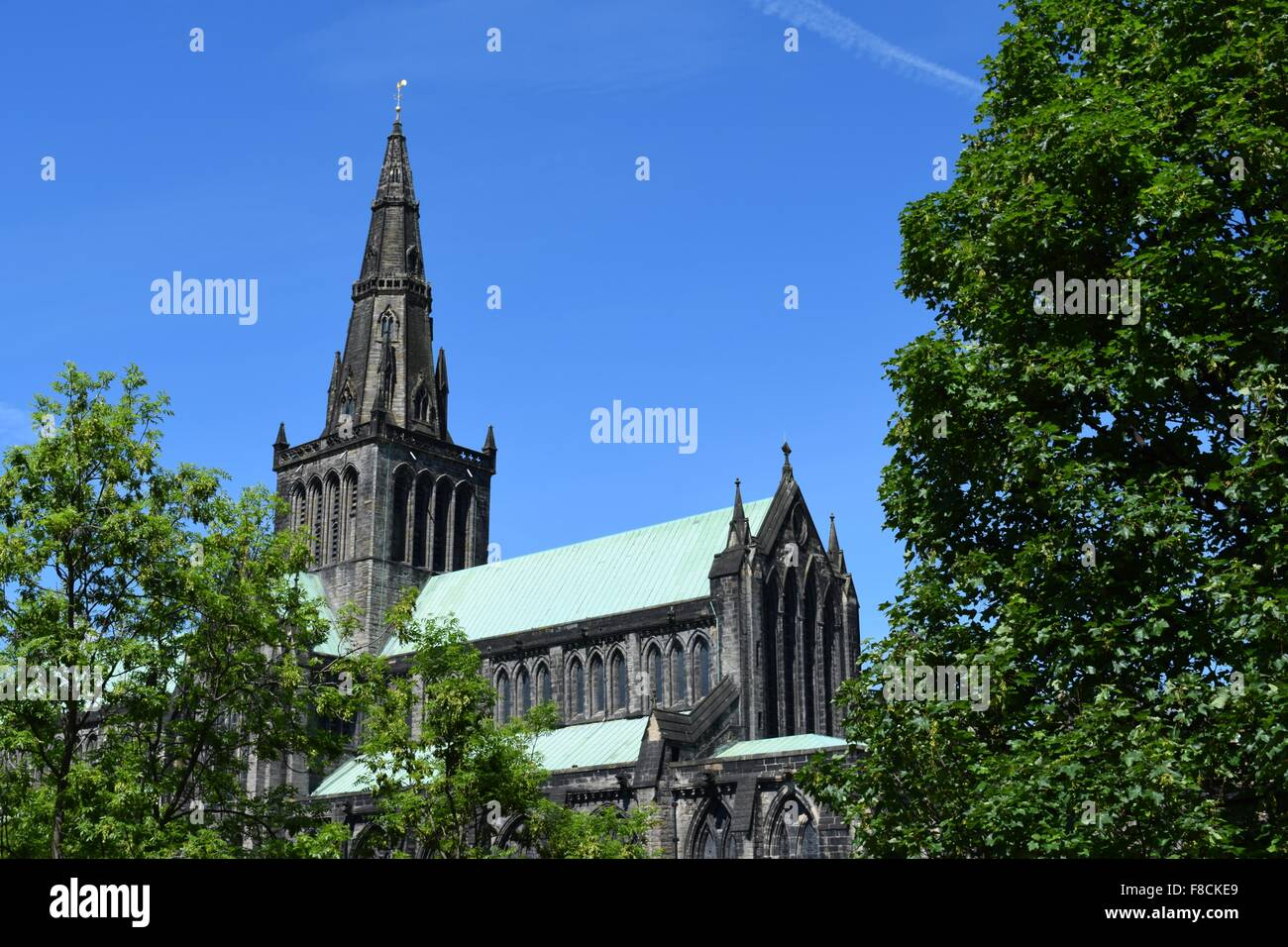 glasgow cathedral viewed from the necropolis glasgow - Stock Image
