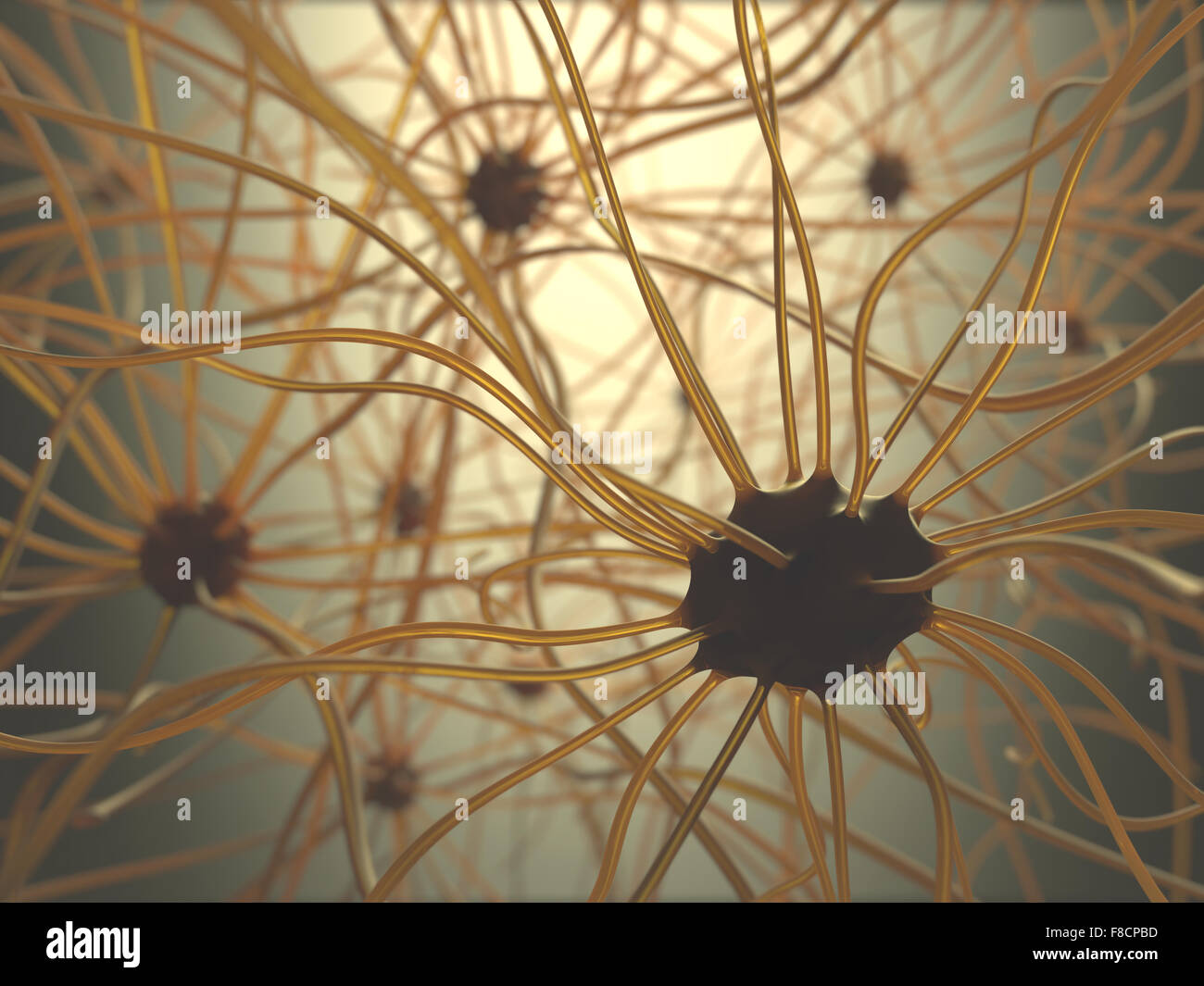 Image concept of neurons interconnected in a complex brain network. - Stock Image