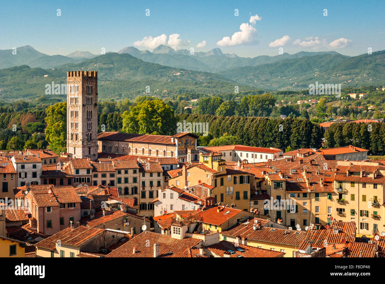 Lucca (Tuscany Italy) panorama with the Cathedral - Stock Image