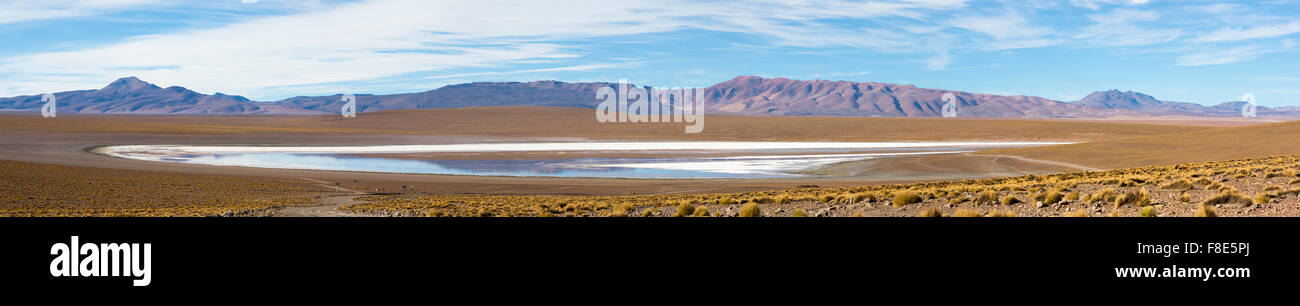 Panorama of mountains and white salt pan in Eduardo Avaroa Andean Fauna National Reserve against a clear blue sky, - Stock Image
