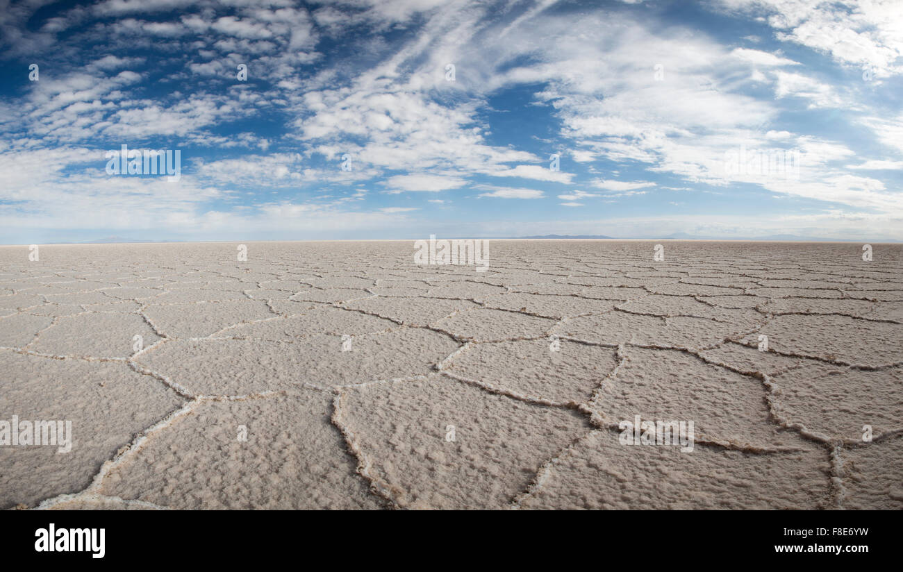 View of the Salar of Uyuni against a blue sky during the dry season, the salt plains are a completely flat expanse - Stock Image