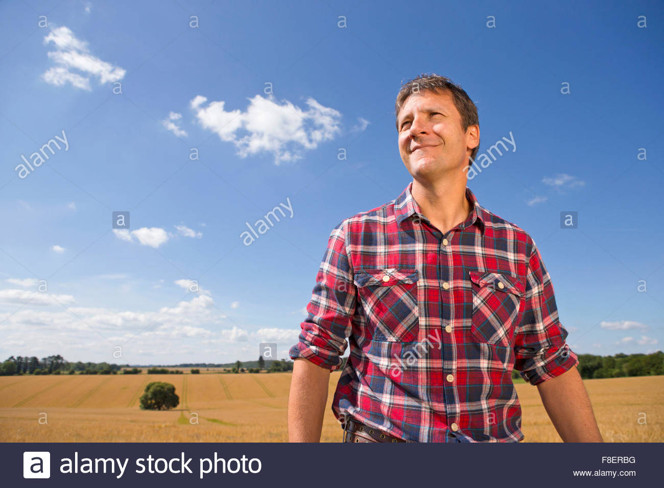 Smiling farmer in sunny rural barley crop field in summer - Stock Image