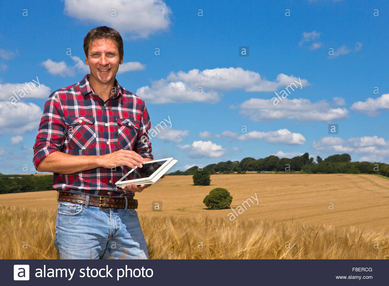 Portrait smiling farmer with digital tablet in sunny rural barley crop field in summer - Stock Image