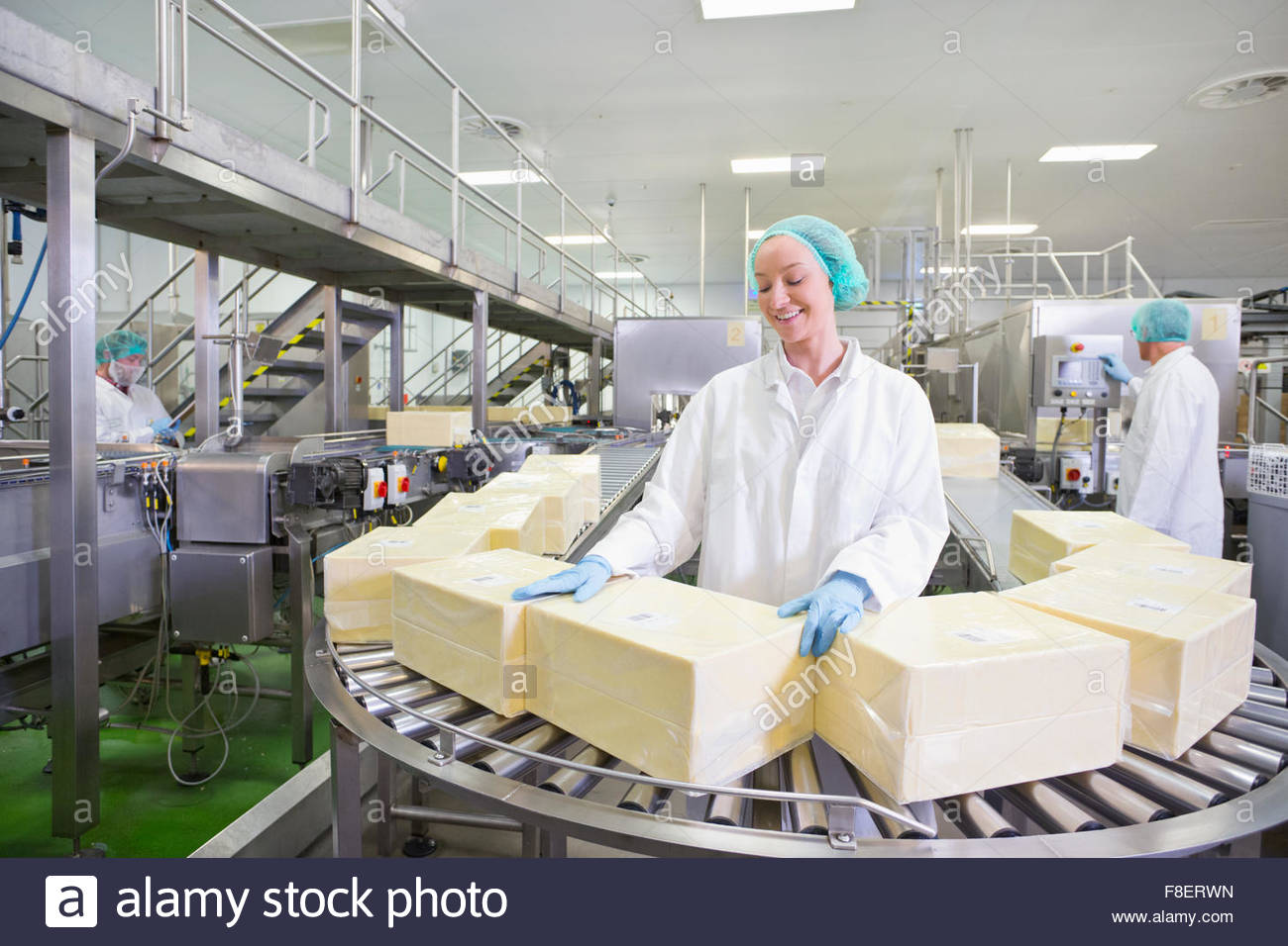 Worker with large blocks of cheese at production line in processing plant - Stock Image