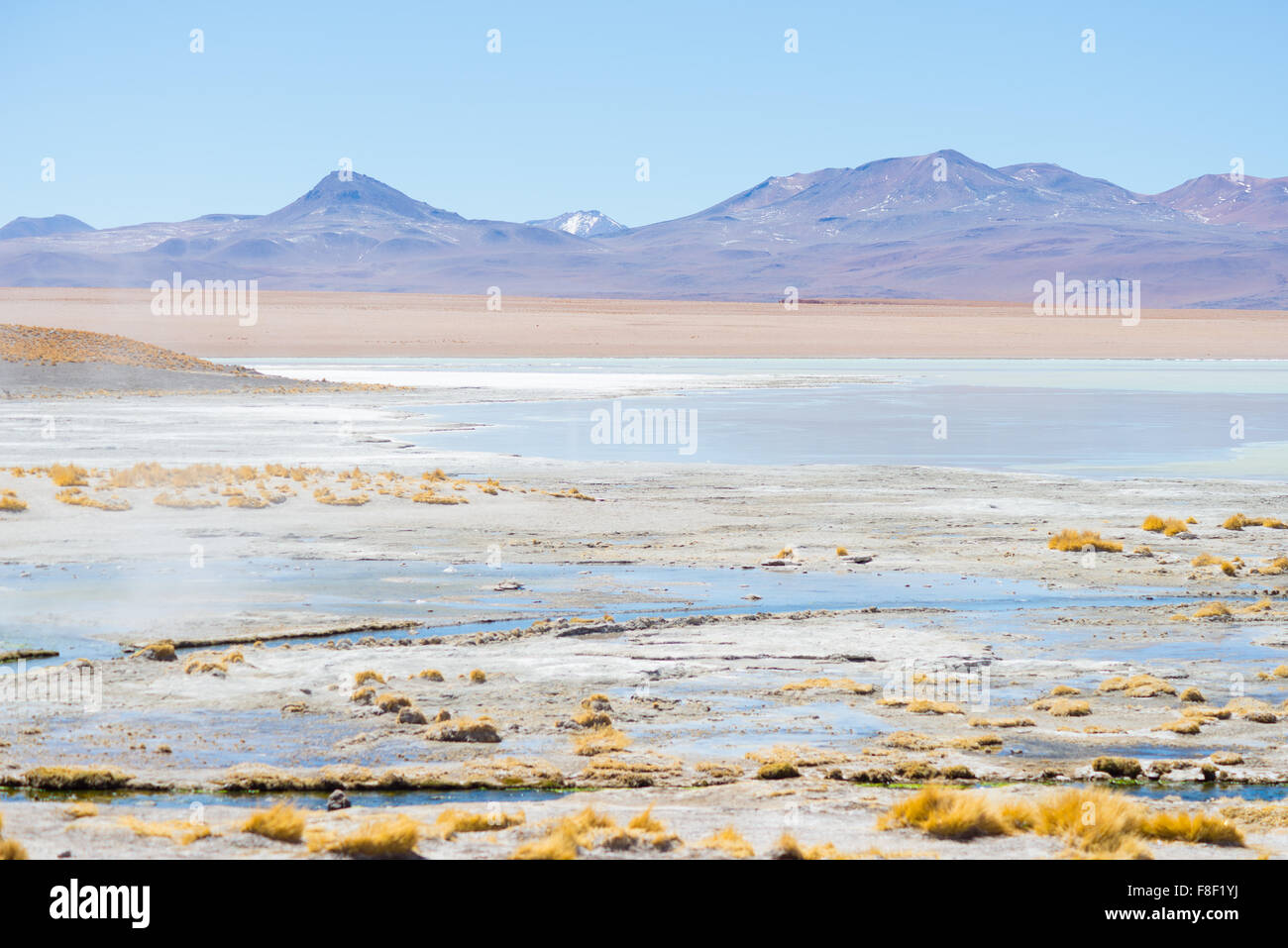 Hot water ponds in geothermal region of the Andean Highlands in Bolivia. Frozen salt lake, distant mountain range - Stock Image