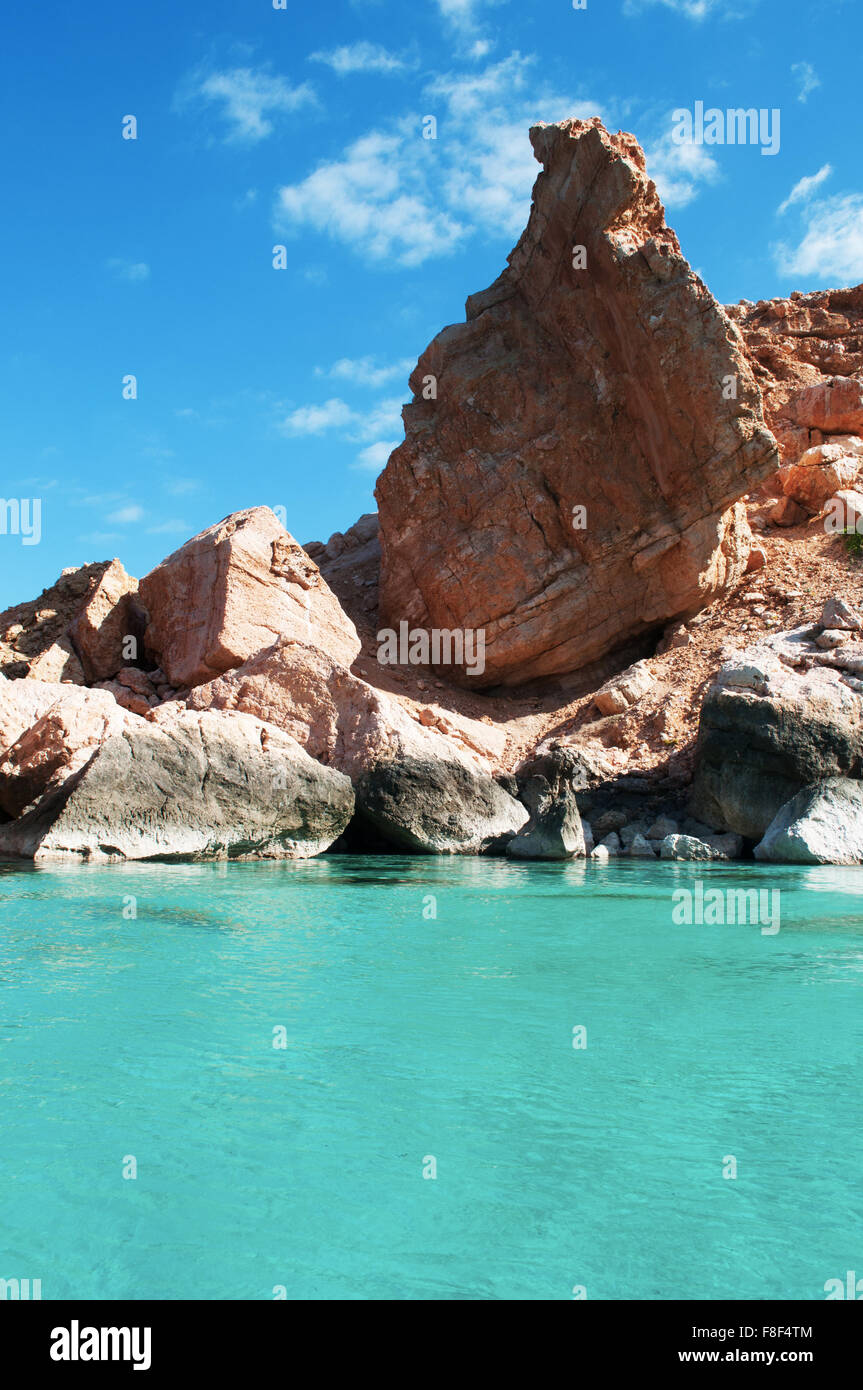 The protected area of Shauab beach, Gulf of Aden, Arabian Sea, Socotra Island, Yemen, Middle East. Unique biodiversity - Stock Image