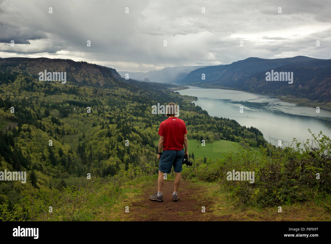 WA12255-00...WASHINGTON - Hiker overlooking the Columbia River Gorge from the Nancy Russel Overlook on the Cape - Stock Image