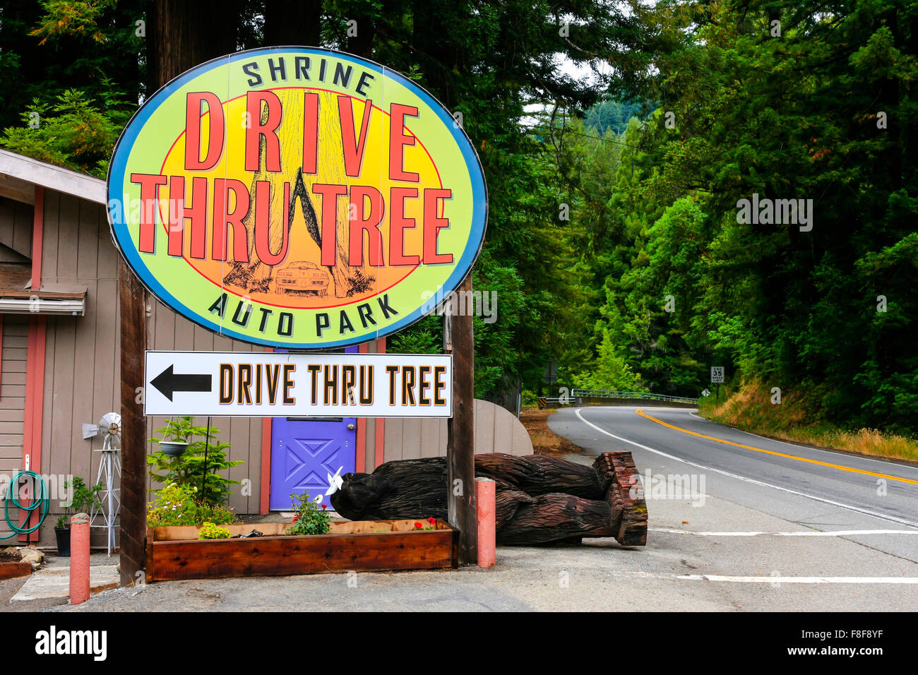 The Drive Thru Shrine Tree auto park overhead sign in Myers Flat California - Stock Image